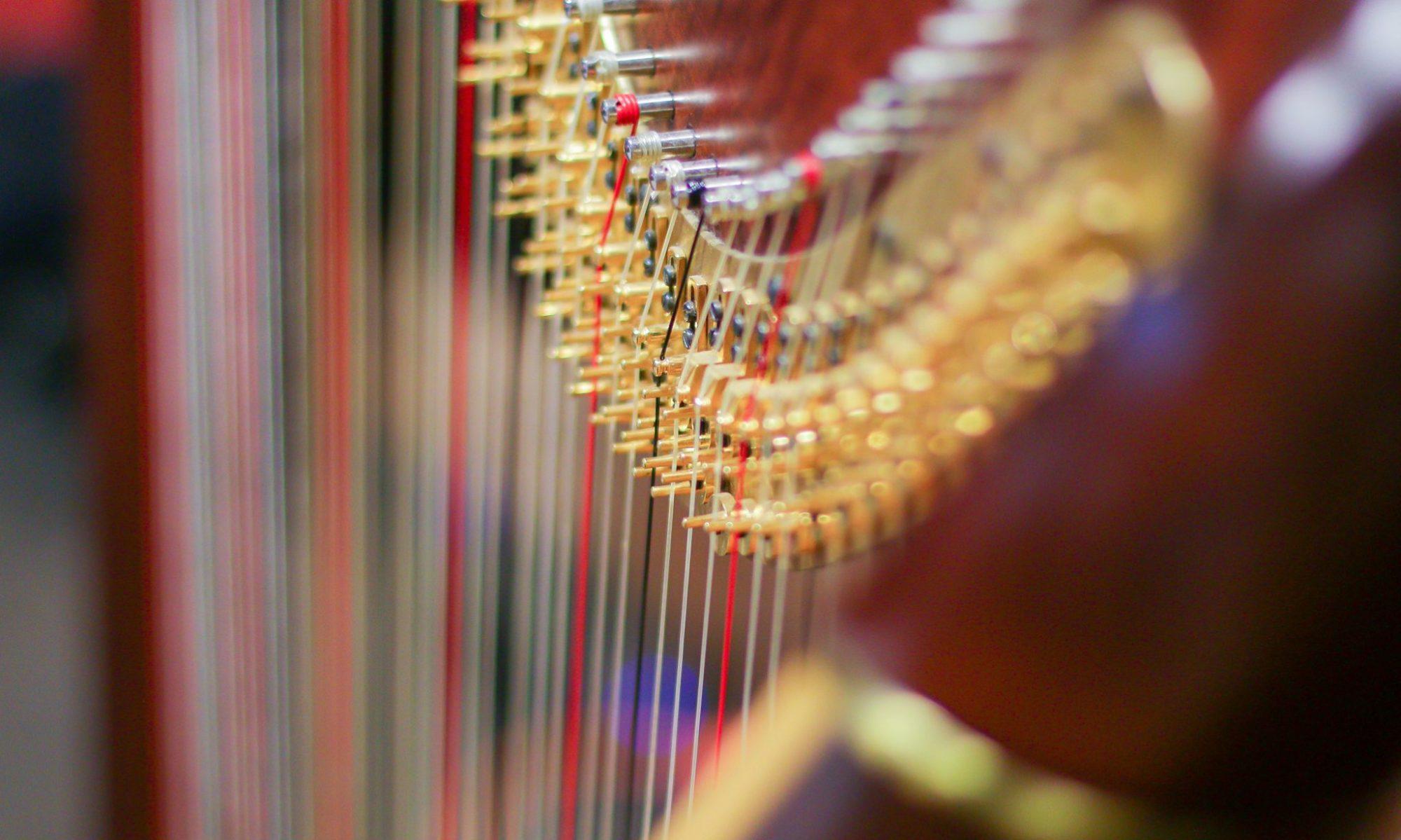 Fabio Rizza Harpist